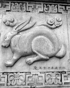 rabbit chinese zodiac