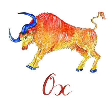 Ox Horoscope 2020 & Feng shui forecast