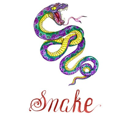 Snake 2020 Chinese Horoscope – Get Your Astrological Predictions!