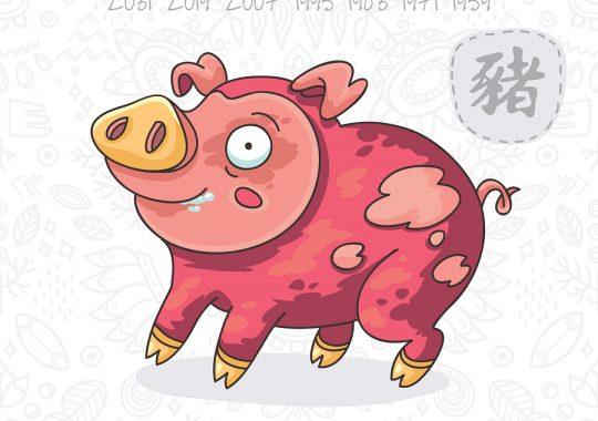 Pig Horoscope & Feng Shui Forecast