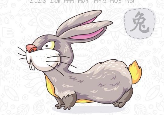 Rabbit 2019 Chinese Horoscope & Feng Shui Forecast