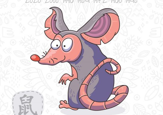 Rat 2019 Chinese Horoscope & Feng Shui Forecast